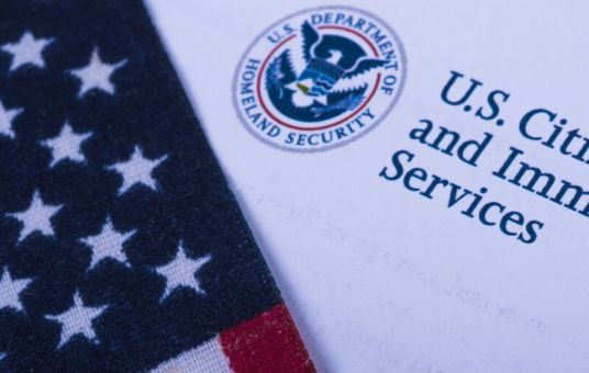 USCIS Revises Policy Manual and AFM to Remove and Modify Outdated References to Form G-325