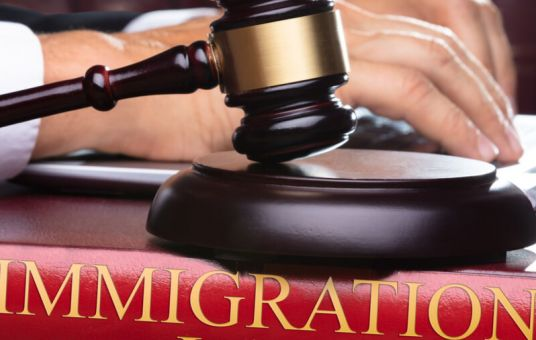 Three New Appellate Immigration Judges Appointed to BIA (Aug. 11, 2020)